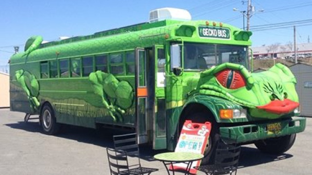 Gecko Bus photo